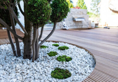 Chetwoods 'Future City Garden: Nature and City' centrepiece of United Nations Biodiversity Conference